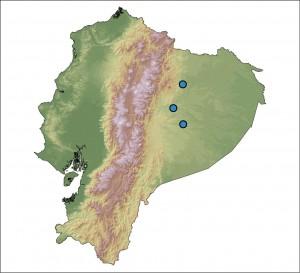 Miejsca w Ekwadorze, w których znaleziono Hyalinobatrachium yaku